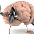 8 Ways to Boost Brain Power
