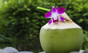 <thrive_headline click tho-post-10259 tho-test-44>8 Ways Coconut Water Makes Your Body Happy</thrive_headline>