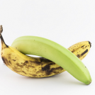 <thrive_headline click tho-post-13371 tho-test-136>How Strong Is Your Banana Game?</thrive_headline>
