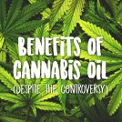 <thrive_headline click tho-post-34469 tho-test-221>Top Benefits of Cannabis Oil (Despite it's Controversy)</thrive_headline>
