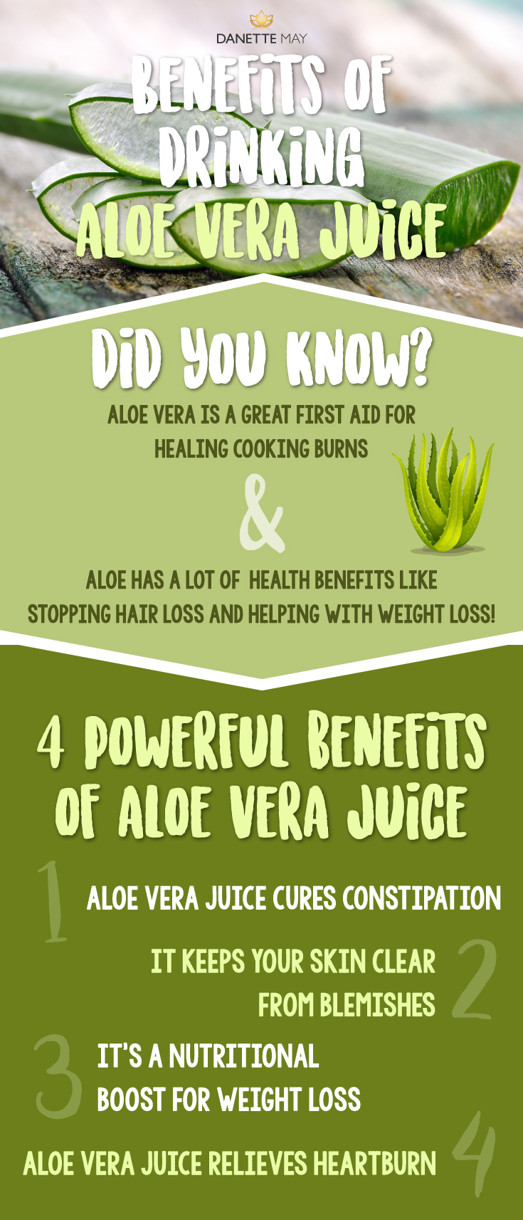 4 Powerful Benefits Of Drinking Aloe Vera Juice Danettemay