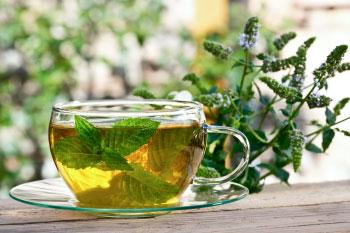 peppermint tea stop belly bloat