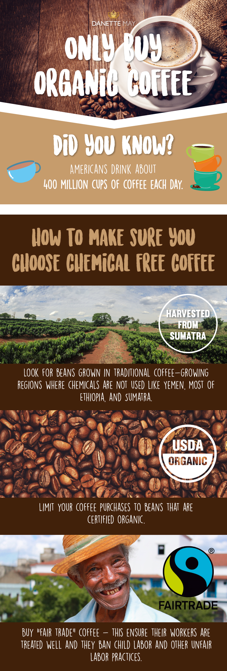 organic coffee infographic