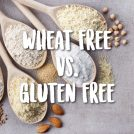 <thrive_headline click tho-post-39119 tho-test-260>Wheat Free vs Gluten Free (there's a difference)</thrive_headline>