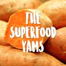 Yams and Sweet Potatoes are Not the Same (which is best)