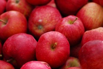 apple skins never peel potatoes