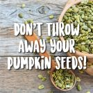 <thrive_headline click tho-post-41524 tho-test-278>4 Reasons to Never Throw Pumpkin Seeds Away</thrive_headline>