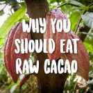 10 Reasons to Eat Raw Cacao