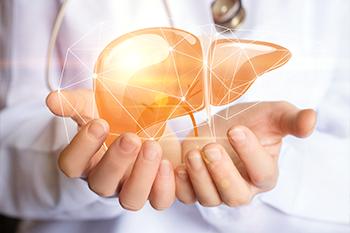 elderberry boost immune system liver detox