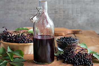 research prove elderberry help weight loss immune system