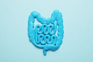 blue representation of intestines for good gut health