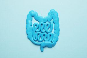 blue representation of intestines for good gut health
