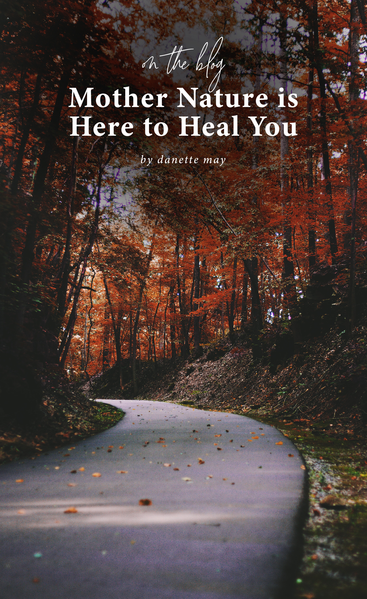 How mother nature heals you physically and mentally